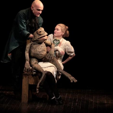 Le Roi Grenouille - <a style='display:inline' target='_blank' href=&quot;http://theatreduvertige.net/la-compagnie/&quot; target=&quot;_blank&quot;>Pierre Kroepflen</a>, marionnette de <a style='display:inline' target='_blank' href=&quot;http://theatreduvertige.net/la-compagnie/&quot; target=&quot;_blank&quot;>Sonia Toporowski</a>, <a style='display:inline' target='_blank' href=&quot;http://www.wantedmodels.com/fr/93/stephanie-g&quot; target=&quot;_blank&quot;>Stéphanie Gagneux</a>, Photo de Michel Thomas