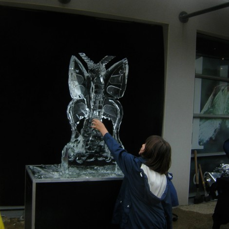 """- Sculpteur sur Glace <a style='display:inline' target='_blank' href=""""http://www.fredice.fr/"""" target=""""_blank"""">Fred'ice</a>"""
